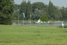 Rhein 255