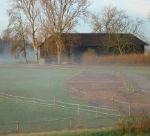 Scheune im Nebel 216x196